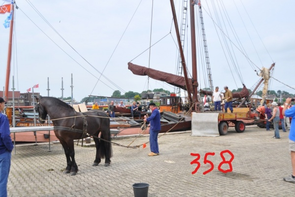 358_Bruinvisch_BHS_10037.jpg