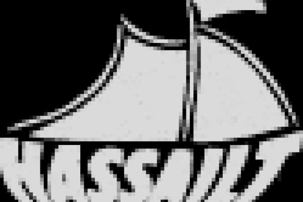 logo-Hassailt.png